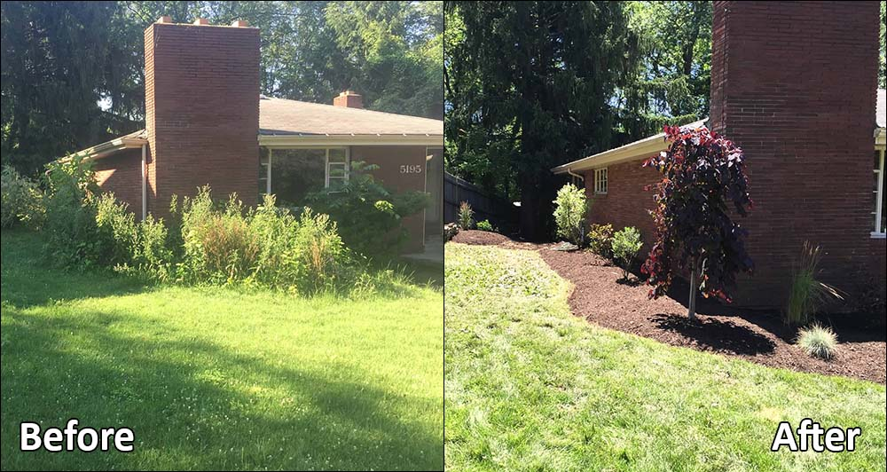 Landscaping around house